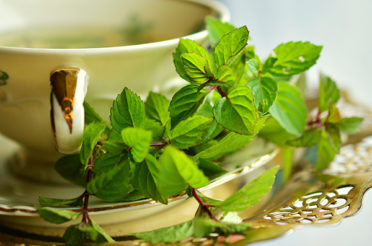 The latest trend of drinking green tea has its own purpose!